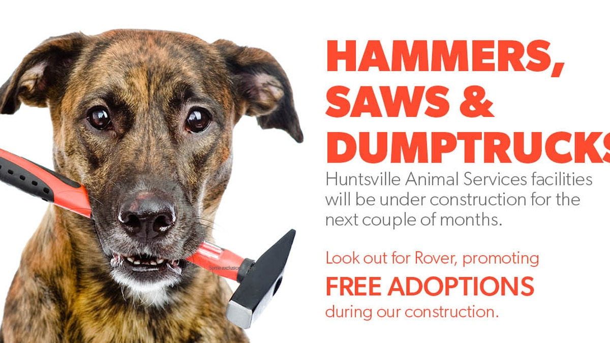 Huntsville Animal Services offering free dog adoptions during construction