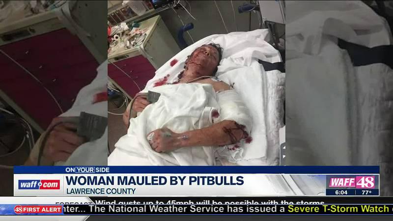 Woman mauled by Pitbulls