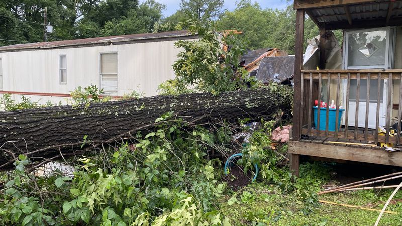 Tree falls on mobile home killing man and child