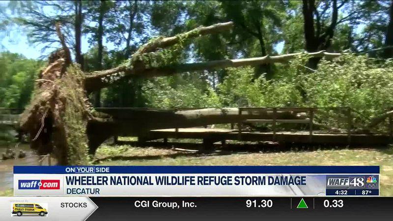 Storm damage at Wheeler National Wildlife Refuge