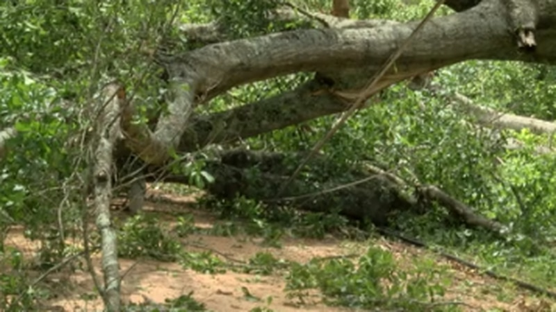 Decatur City Council declares state of emergency following storms