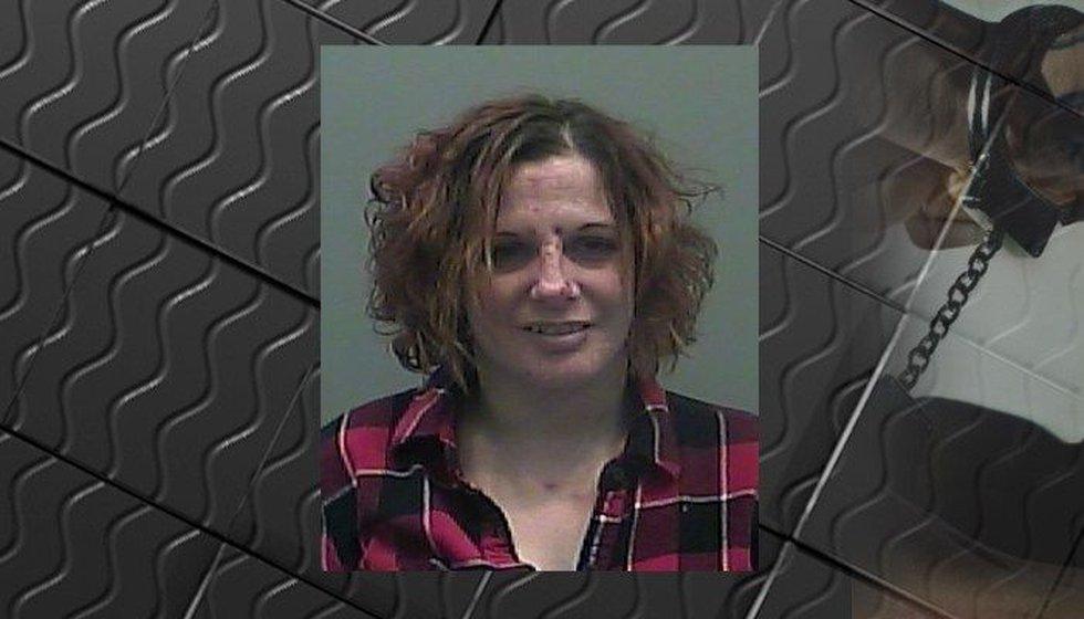 Elizabeth Case (Source: Limestone County Sheriff's Office)