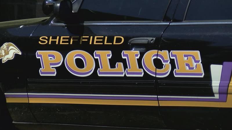 Sheffield police car file image