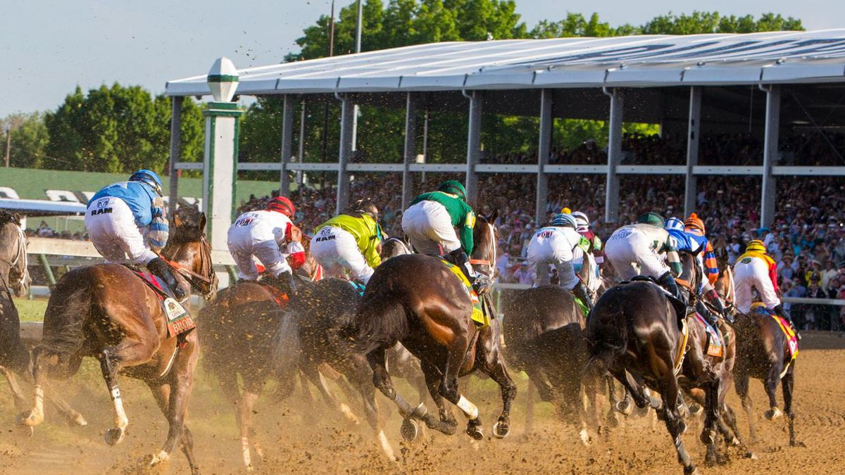 The bipartisan plan called The Horse Racing Integrity Act would improve safety for horses and...