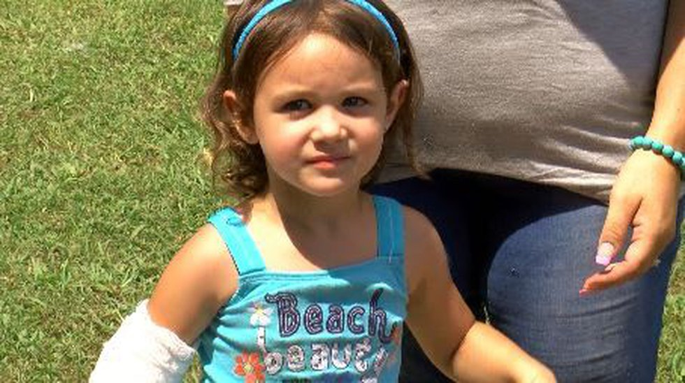 3-year-old Bella was attacked by her neighbor's pet pig in Rogersville. (Source: WAFF)