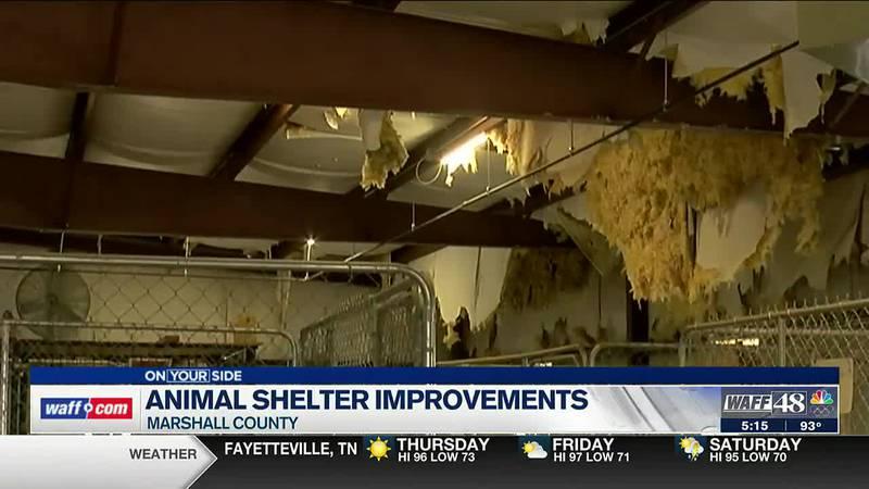 Animal shelter improvements