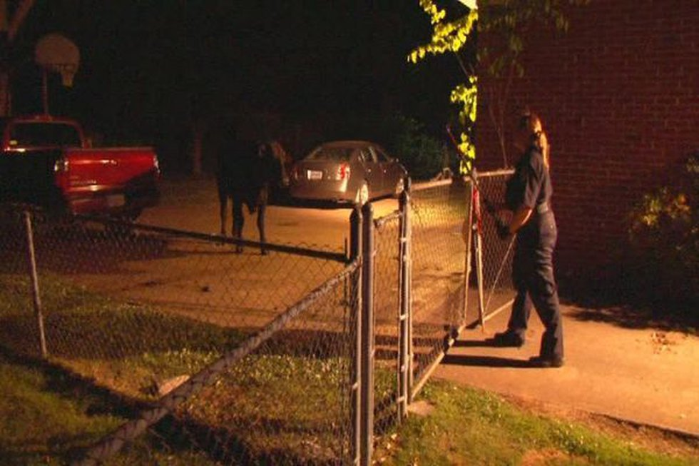 Six Huntsville Police officers and two animal control officers chased the cow for nearly four...