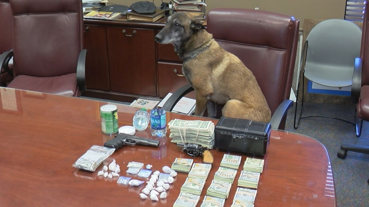Drugs, guns and cash were seized during a search warrant execution in Tanner on March 5, 2019.